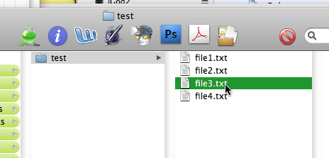 selected file in FG