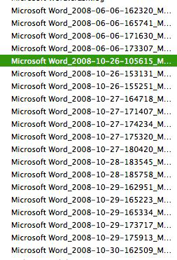 Word 2008 crashes