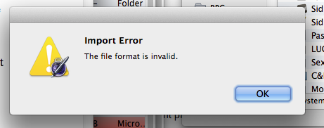 The file format is invalid