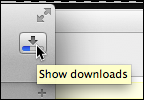 Show Downloads with Progress Bar