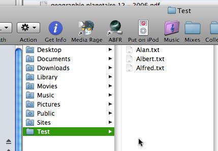File Renaming Bug 1
